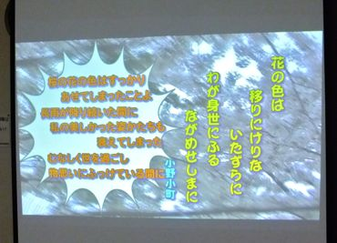 DV-7-1齋藤2/370.jpg
