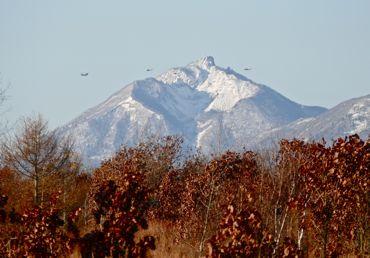 日米共同恵庭岳とヘリボン370.jpg